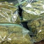 Over 3 Pounds of Pot Found in Car in Delaware 12/10/11