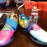 "Nike Zoom KD IV (""What The KD"")"