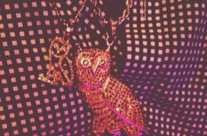 Drake Reacts To OVO Owl Pendant Lawsuit Issued By Michael Raphael