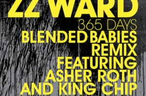 ZZ Ward Ft. Asher Roth & King Chip – 365 Days (Blended Babies Remix)