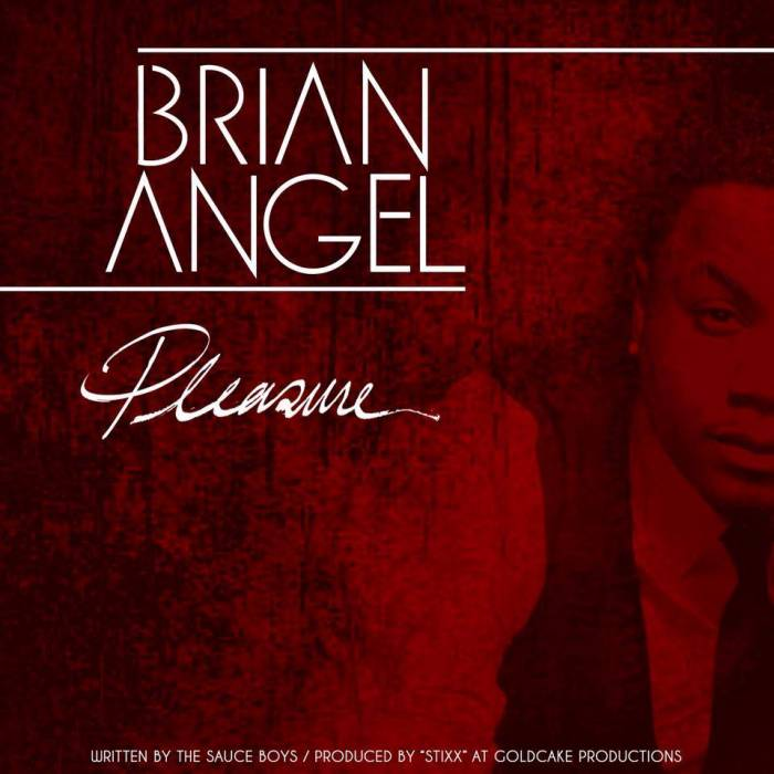 10153285 686677658040343 261325278 n Brian Angel (of Day26)   Pleasure