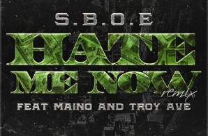 SBOE – Hate Me Now (Remix) ft. Maino & Troy Ave