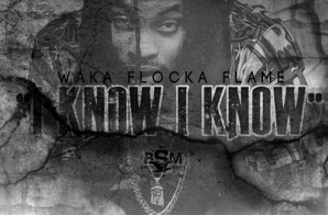 Waka Flocka Flame – I Know (Freestyle)