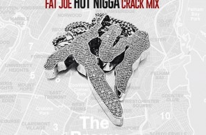 Fat Joe – Hot Nigga (Remix)