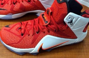 "Nike LeBron 12 ""Lion Heart"" (Photos)"