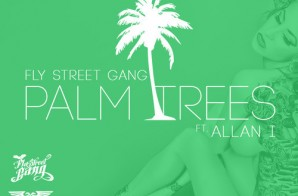 Fly Street Gang x Allan I – Palm Trees (Prod. by Dr