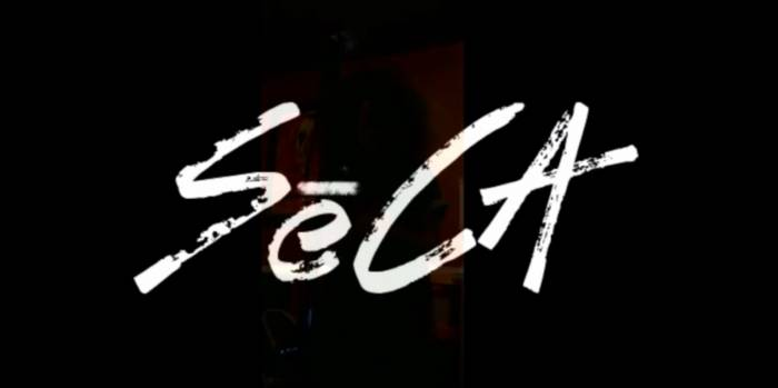 selina-carrera-acoustic-freestyle-video-HHS1987-2014