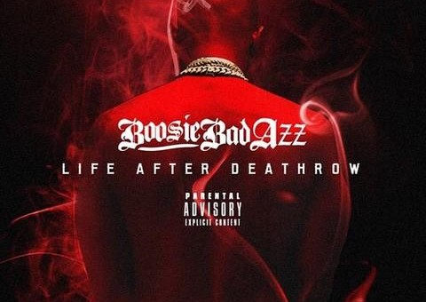 Lil Boosie – All Falls Down