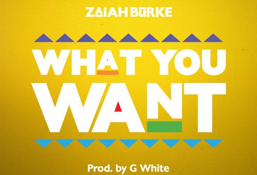 Zaiah Burke – What You Want?