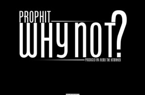 Prophit – Why Not?