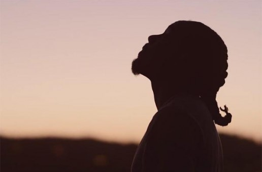 Wale – The Followers (Video)