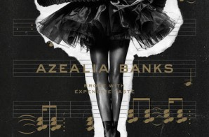 Azealia Banks – Broke With Expensive Taste (Album Stream)