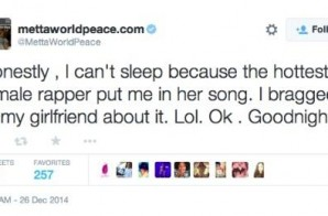 Metta World Peace Becomes Metta Minaj on Twitter.