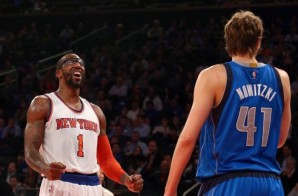 Amare Stoudemire Will Join The Dallas Mavericks