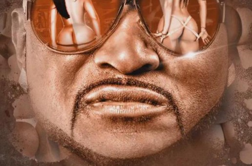 Shawty Lo – Booty Hoes