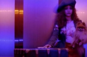 Rihanna – Bitch Better Have My Money (Video Trailer)