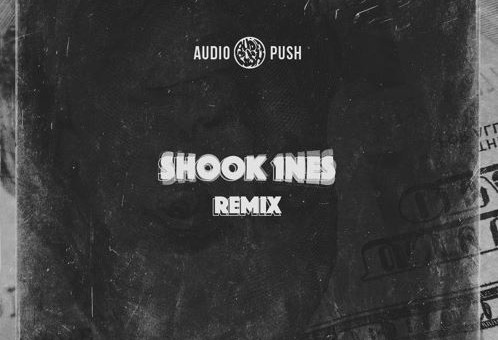 Audio Push – Shook 1nes (Freestyle)