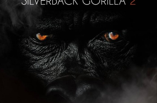 Sheek Louch – Gorilla Language