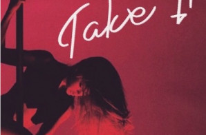 FlynnAlKapone – Take It
