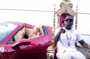 Troy Ave – Young King Video