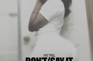 Fat Trel – Don't/Say It (Gleeshmix)
