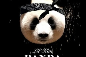 Lil Kim x Maino – Panda (Freestyle)